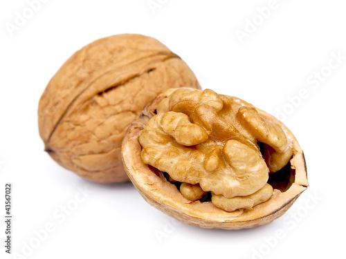 Fotografía  Dried walnut