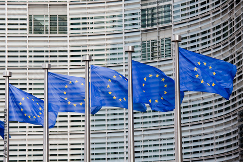 Tuinposter Brussel European flags in Brussels