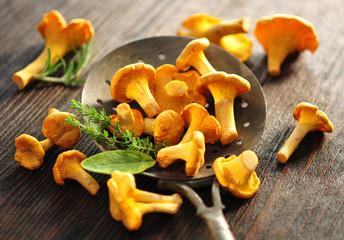 Pilze, Kräuter