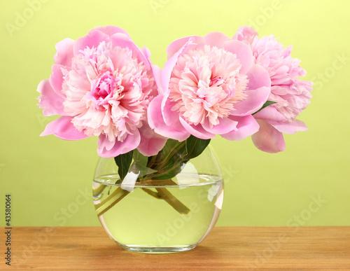 Foto op Plexiglas Magnolia Three pink peonies in vase on wooden table on green background
