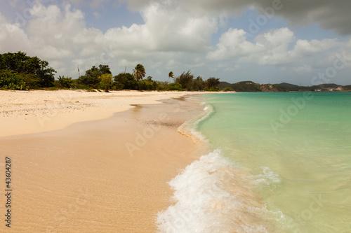 Foto op Aluminium Oceanië Sunny Tropical Caribbean Beach with Blue Cloudy Sky