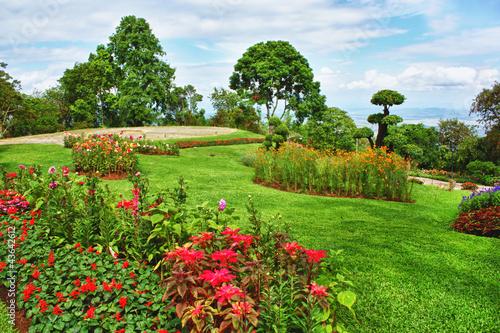 beautiful garden Fototapeta