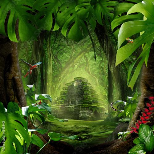 Fotografie, Obraz  Dschungel - Pyramide