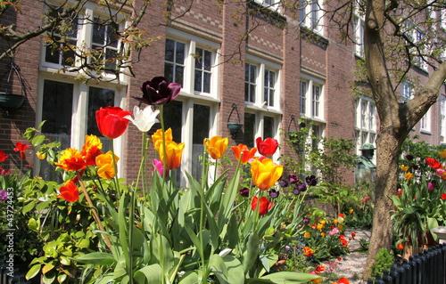 Photo  maison d'amsterdam