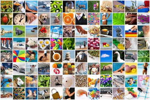 Fotografie, Obraz  Life collage