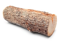 Cut Log Fire Wood From Common ...
