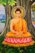 Buddha's Biography Painting On...
