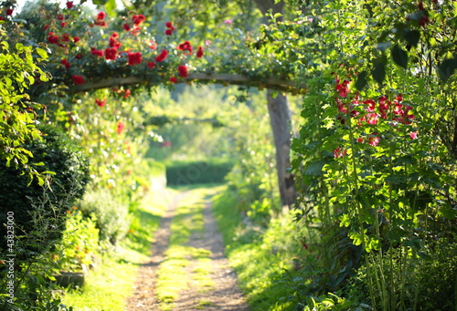 In de dag Zwavel geel Rosenbogenweg