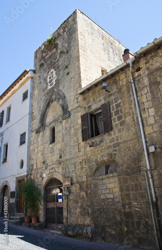 Fotografija  Tower of the Magistrate. Tarquinia. Lazio. Italy.