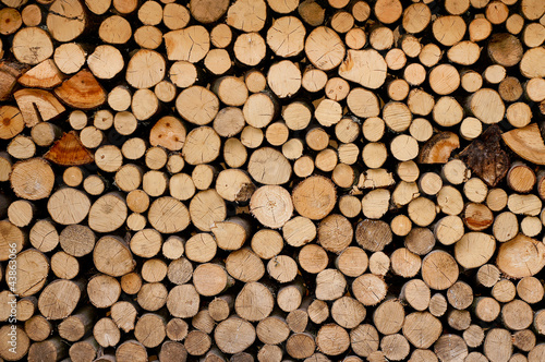 Fototapeta Wood obraz