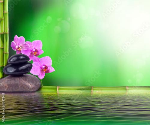 Stillleben Aus Bambus Orchidee Und Steinen Buy This Stock Photo