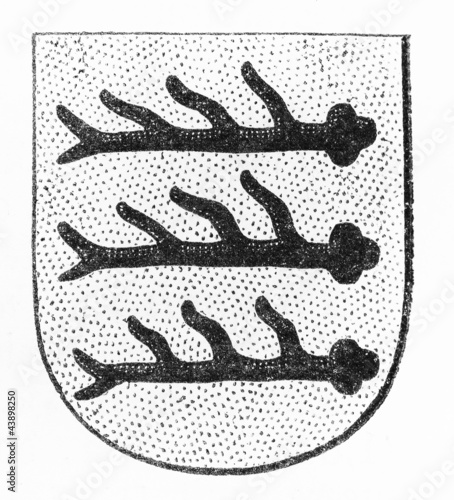 Tuttlingen (Germany) coat of arms at late 1800's - Buy this