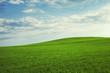 canvas print picture - schöne grüne hügel mit blauem himmel