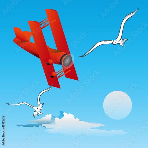 Fotobehang Vliegtuigen, ballon Risk of Flight - birds