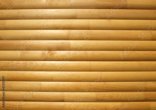 Timber background closeup Wallpaper Mural