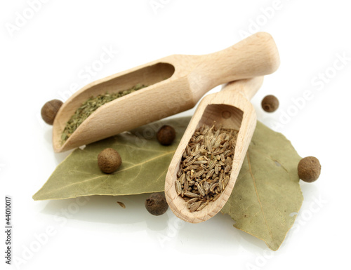 Canvas Prints Herbs 2 wooden shovels with spices on bay leaves isolated on white