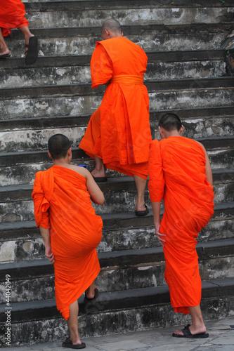 Cuadros en Lienzo Mönche Thailand