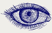 Woman Eye. Sketch