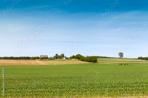 Fotografie, Obraz  American Farmland