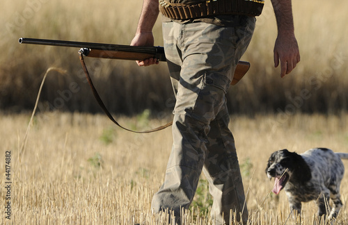 Foto op Aluminium Jacht Hunting with english setter