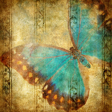 Vintage Background With Blue Butterfly Over Grunge Wallpaper
