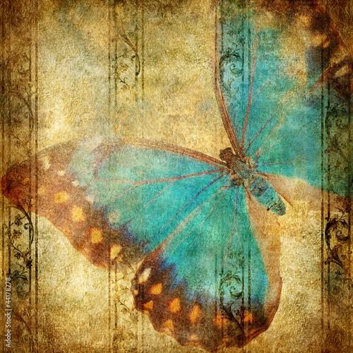 Foto auf Leinwand Schmetterlinge im Grunge vintage background with blue butterfly over grunge wallpaper