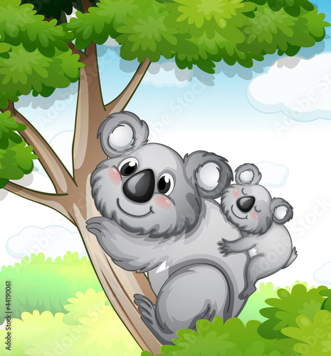 Poster Ours bears in nature