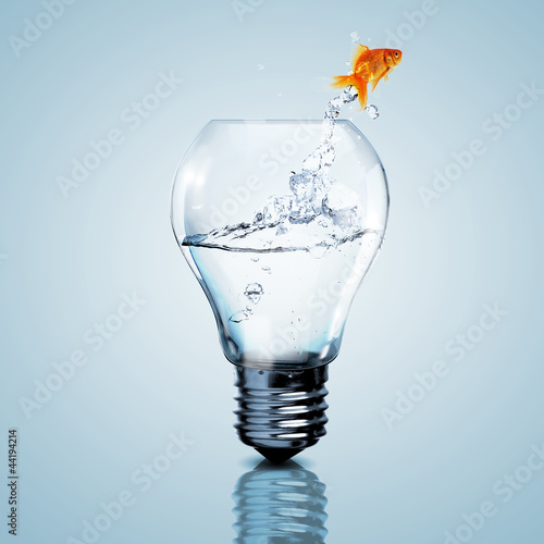 Photographie  Gold fish inside an electric bulb