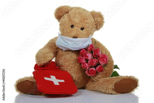 Teddybear with roses #44207236