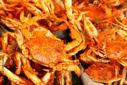 Fotobehang Schaaldieren Crab