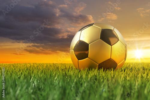 Foto-Stoff bedruckt - Fussball gold schwarz 3D auf Rasen im Sonnenuntergang (von Gunnar Assmy)