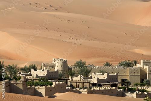 Poster de jardin Desert de sable Abu Dhabi's desert dunes