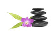 Zen pebbles balance. Orchid and bamboo leaf