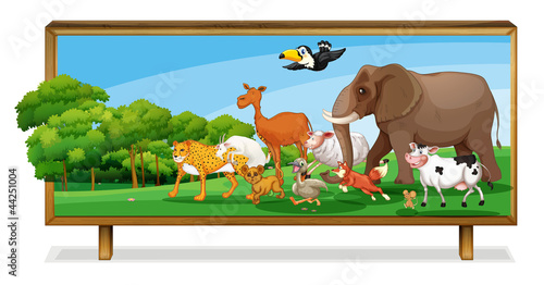 La pose en embrasure Forets enfants Animals in jungle on board