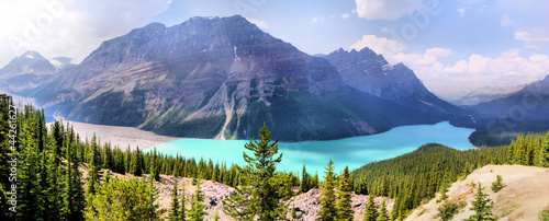 Spoed Foto op Canvas Canada Panoramic view of Peyto Lake, Banff, Canada