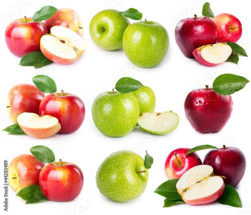 Poster Légumes frais Fresh apples