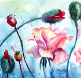 Roses with poppy flowers, Watercolor painting - 44312433
