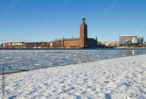 Winter image of Stockholm city hall. Canvas