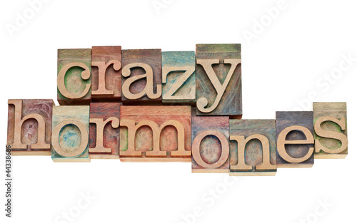 Fotografia, Obraz  crazy hormones text  in wood type