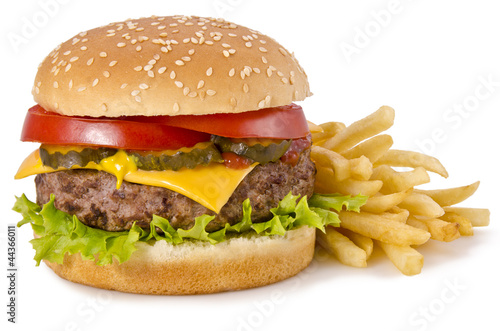 Fotografie, Obraz  Burger and french fries