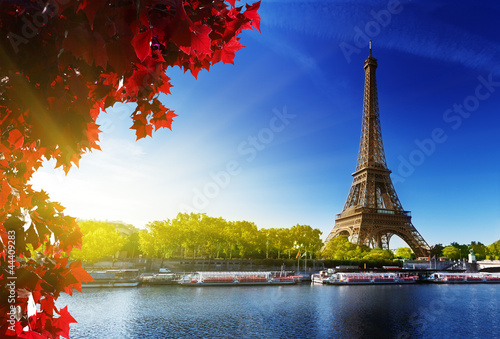 Photo  color of  autumn in Paris