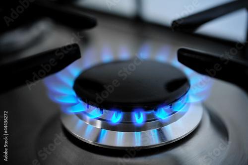 Fotografía  blue flames