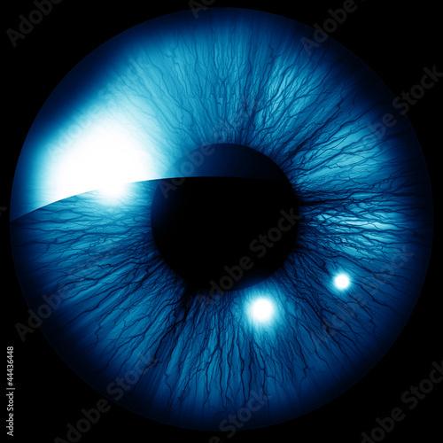 Deurstickers Iris Human iris