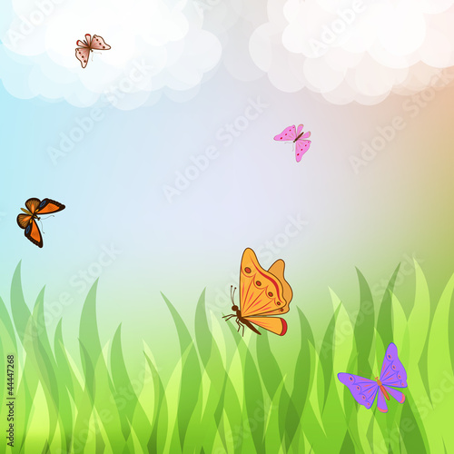 Tuinposter Vlinders Colorful butterflies flying over green grass