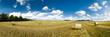 canvas print picture - Strohballen auf einem Feld als Panoramafoto