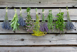 Fototapeta Lavender - Herbs drying on the wooden barn in the garden