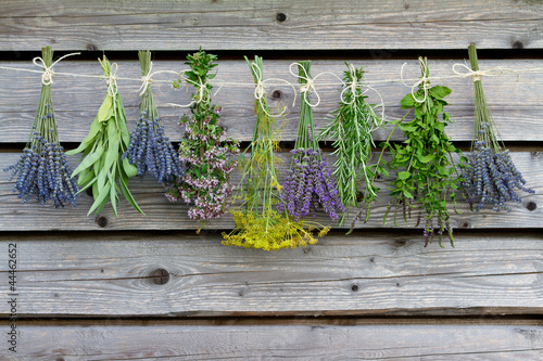 Doppelrollo mit Motiv - Herbs drying on the wooden barn in the garden (von Gorilla)