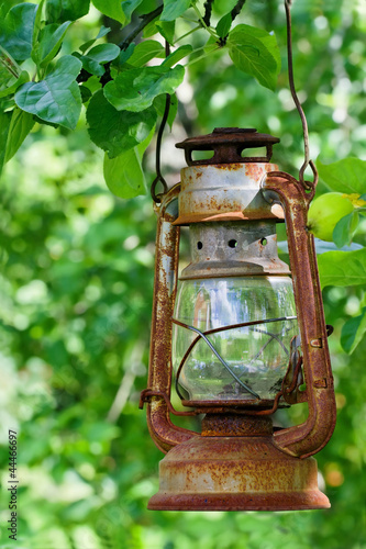 Photo  Picturesque oil lantern hanging in an apple tree