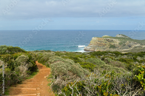 Fotografering  Path with beautiful sea view, Cape of Good Hope, South Africa