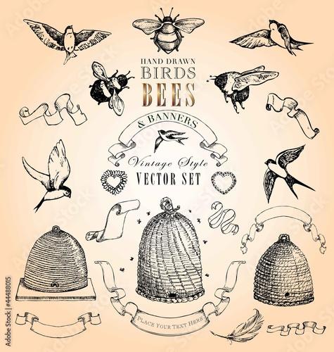 styl-vintage-ptaki-pszczoly-i-banery-wektor-zestaw